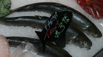 Fresh trout from Northern Fish in Tacoma, Washington.